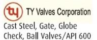 TY_Valves